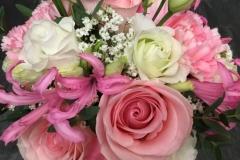 Roses nerine