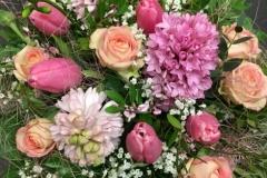 Jacinthes - tulipes